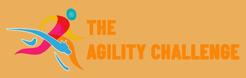 The Agility Challenge